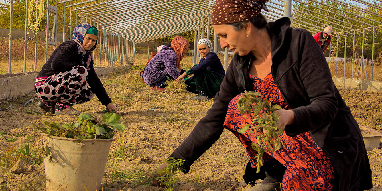 Oxfam in Asia - Tajikistan - Economic Empowerment