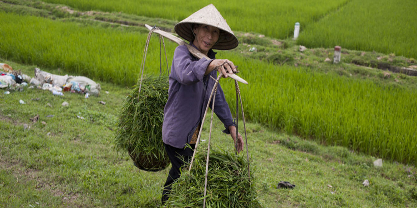 Oxfam in Asia - Campaigns and Policy Influencing - Climate Change and Food Security - GROW