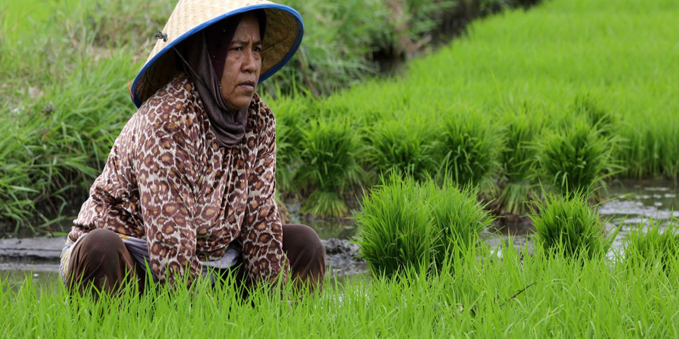 Oxfam in Asia - Indonesia - Economic Justice