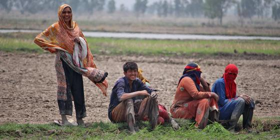 Oxfam in Asia - Rice Report Blog 2019