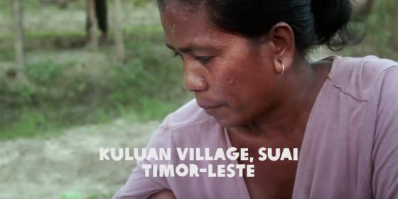 Oxfam in Asia - Stories - Timor Leste - Weathering Climate Change in Timor Leste