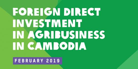 Report on Foreign Direct Investment