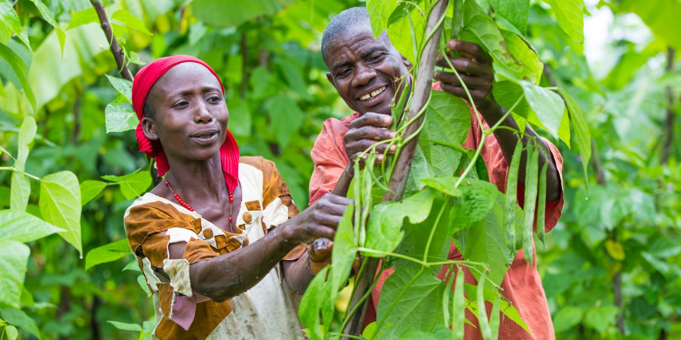 Calinie and Theophile Nzokirantevye in their bean farm in Bujumbura province, Burundi. Lisa Murray/Oxfam