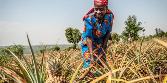 Theresie in her organic pineapple farm in eastern Rwanda. Aurelie Marrier d'Unienville / Oxfam