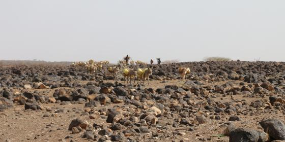 Drought Striken Marsabit County. Photo Credit; Blandina Bobson