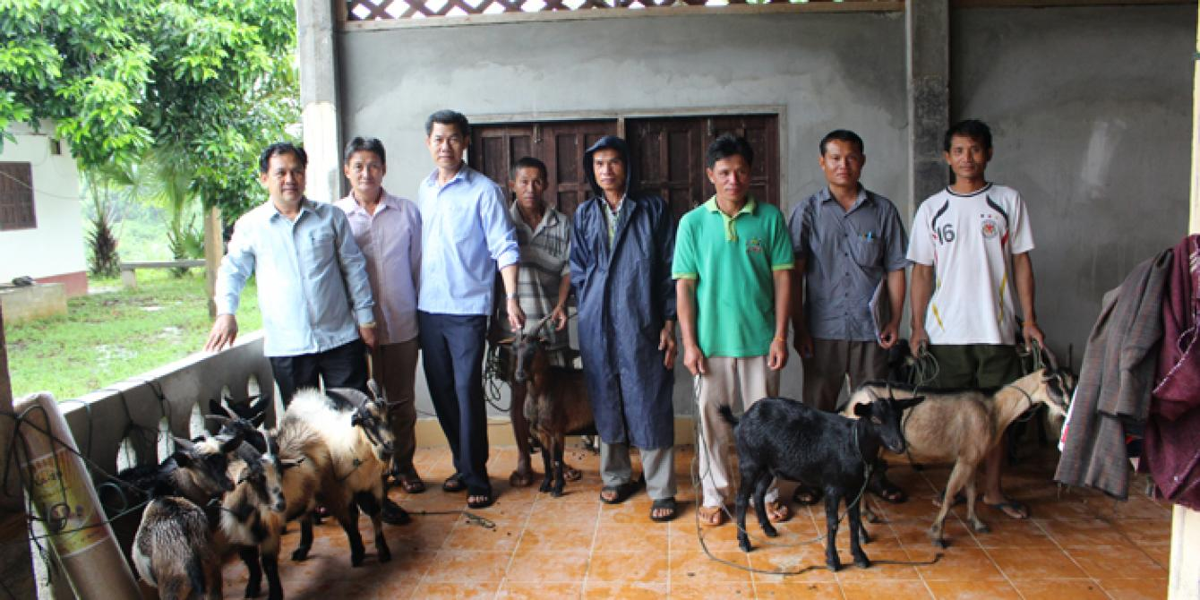 Handover of goats to community