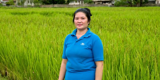 woman in blue standing nest to a green rice field