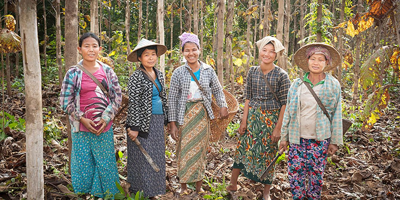 5 Women in Kachin Community Forestry