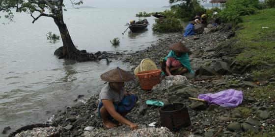 Local women collecting fish and prawn beside the sea in a village or Kyauk Phyu, Rakhine State