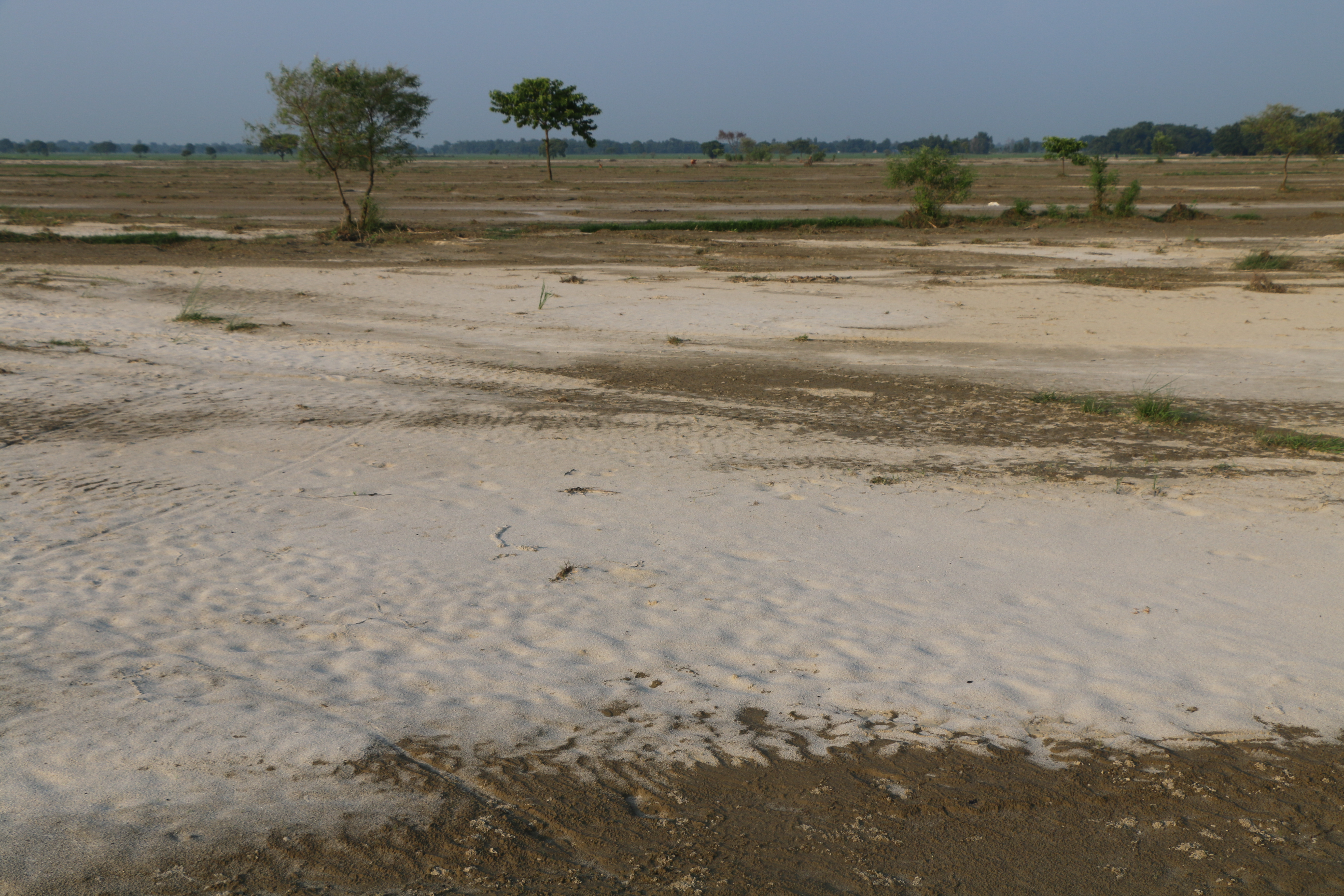 Heavy sand deposited on agricultural land