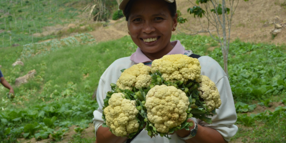 Lyn Baban, 32, shows off organic cauliflowers harvested by members of the Samahan ng Organikong Magsasaka (SOMA) in Titulok village, Bagumbayan, Sultan Kudarat. The produce were were to be sold at the Harvest Festival, which aims to promote SOMA's produce to the local community and provide a venue for El Niño-affected farmers to sell their fruits and vegetables. (Airah Cadiogan/Oxfam)