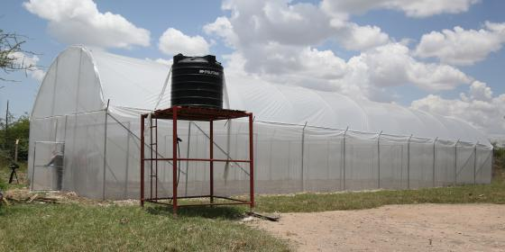 The new constructed green house for the Kishapu district's youth program (Photo credit: Kisuma Mapunda/Oxfam)