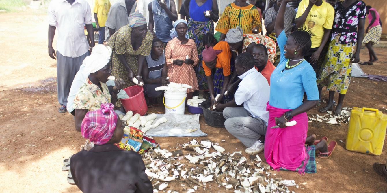 Oruukit Farmers' Group members during a cassava variety yield tasting in Pader district. Photo credit:Oxfam