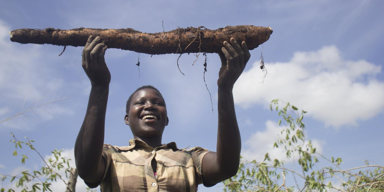 Atimango Sharon raises a cassava stem tuber harvested from the joint farmers group garden. Photo credit: Oxfam