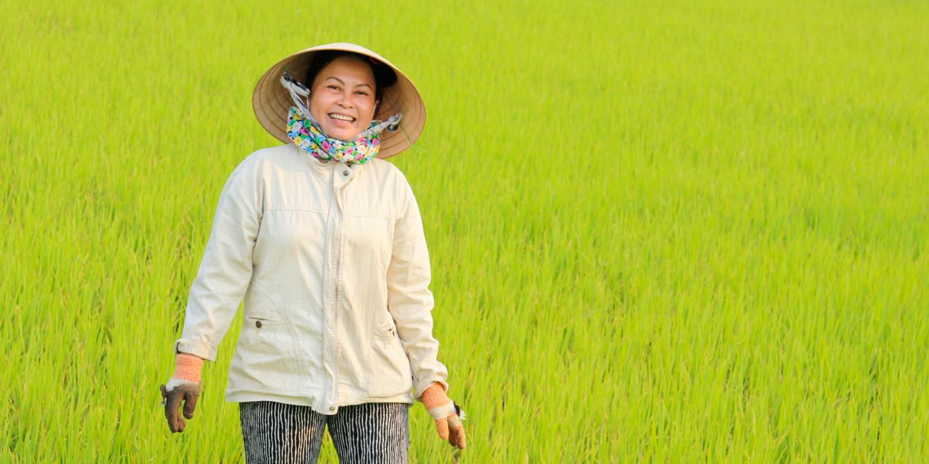 Working the rice fields in rural Vietnam. Credit: Oxfam Vietnam