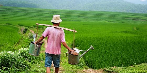 A farmer at work in Hoa Binh province. Credit: Oxfam Vietnam